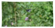 Up, Up And Away-black Swallowtail Butterfly Beach Towel