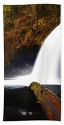 Upper Butte Creek Falls Beach Towel