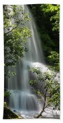 Upper Catawba Falls Beach Towel