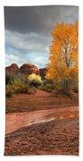 Utah Autumn Beach Towel
