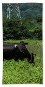 Vacas De Ahuachapan 2 Beach Towel