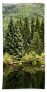 Vail Reflections In The Summer Beach Towel