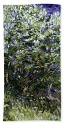 Van Gogh: Lilacs, 19th C Beach Towel