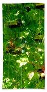 Vegetables Plant For Urban Life 2 Beach Towel