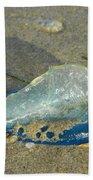 Velella With Shadow Beach Sheet