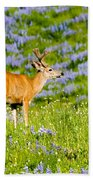 Velvet On Lupine Beach Towel