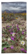 Verbena And Primrose Beach Towel
