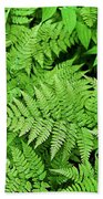 Verdant Ferns Beach Towel