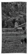Vermont Farm With Cows Black And White Beach Towel