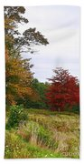Vermont Roadside Color Beach Towel