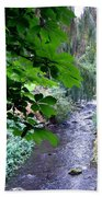 Vernon Creek Beach Towel
