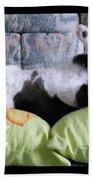 Very Corpulent Mz Kitterz Beach Towel