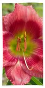 Victoria Grace Daylily Beach Towel