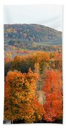 View From Olana 4 Beach Towel