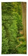 View From The Lllangollen Aqueduct In Wales Beach Towel