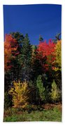 View In The Appalachian Mountains Beach Towel