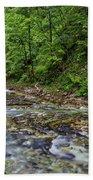 View In Vintgar Gorge - Slovenia Beach Towel