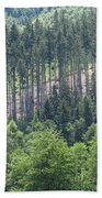 View Of The Mixed Forest Beach Towel