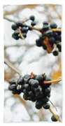 Vignettes - Indigo Winter Berries Beach Towel