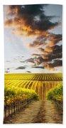Vineard Aglow Beach Towel by Sharon Foster