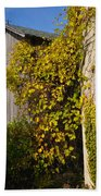 Vined Silo Beach Sheet