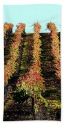 Vineyard 27 Beach Towel
