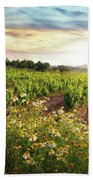Vineyard Beach Towel by Carlos Caetano