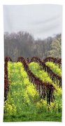Vineyard In Westfield Beach Towel