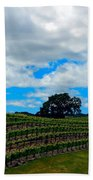 Vineyards In Paso Robles Beach Towel