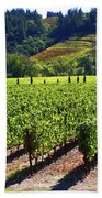 Vineyards In Sonoma County Beach Towel