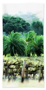 Vino Palmetto Beach Towel