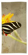 Vintage Butterfly Beach Towel