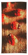 Vintage Wooden Ladybugs Beach Towel