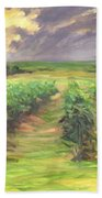 Vinyard Beach Towel