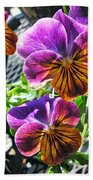 Violas Beach Towel