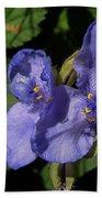 Violet Blooms Beach Towel