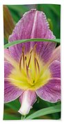 Violet Day Lily Beach Towel