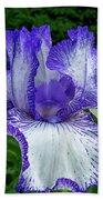 Violet Iris Beach Sheet