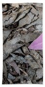 Violet Leaf On The Ground  Beach Towel