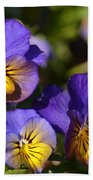 Violets 15-01 Beach Towel