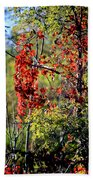 Virginia Creeper Beach Towel
