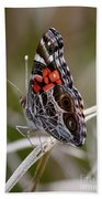Virginia Lady Butterfly Side View Beach Towel