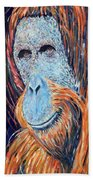 Visit To The Zoo Beach Towel
