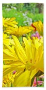 Vivid Colorful Yellow Daisy Flowers Daisies Baslee Troutman Beach Towel