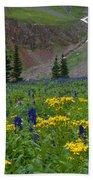 Vivid Colors Of The Colorado Alpine Beach Towel