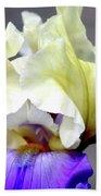 Vivid Iris 6622 H_3 Beach Towel