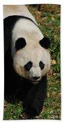 Waddling Giant Panda Bear In A Grass Field Beach Towel