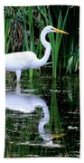 Wading For Food Beach Towel