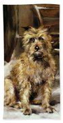 Waiting For Master   Beach Towel by Jane Bennett Constable