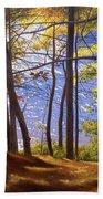 Walden Pond IIi Beach Towel